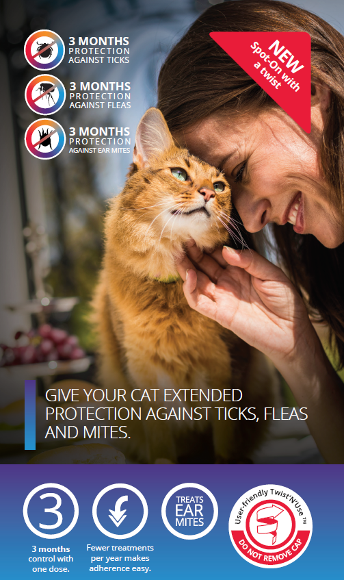 3 months tick, flea, and ear mite protection Click here to learn more about Bravecto Spot on